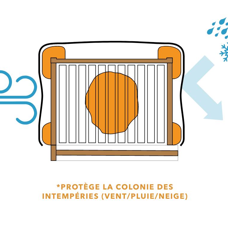 Protege la colonie des intempéries